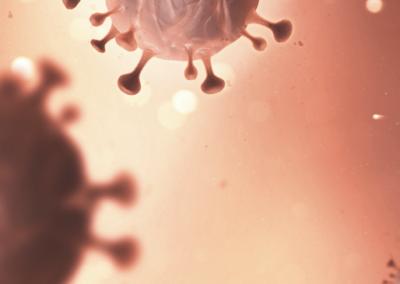 N°3 – Immunité